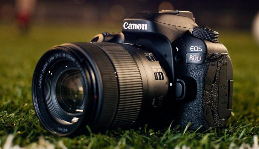 Kết quả hình ảnh cho 8 Best Lenses for Canon EOS 80D in 2018