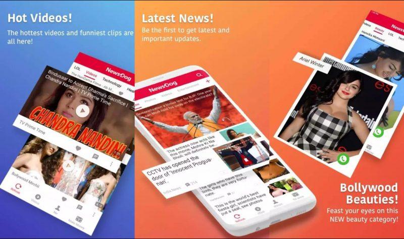 NewsDog App.