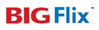 Big Flix logo