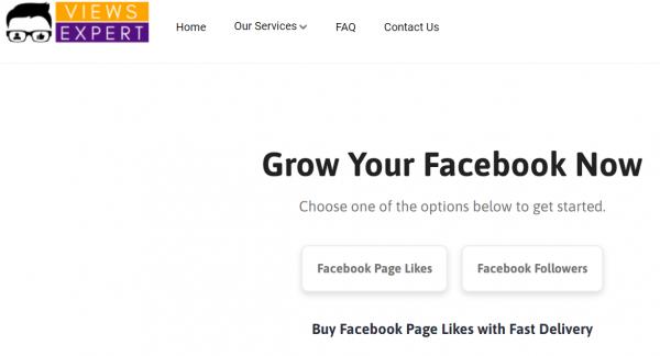 viewsexpert - buy facebook likes