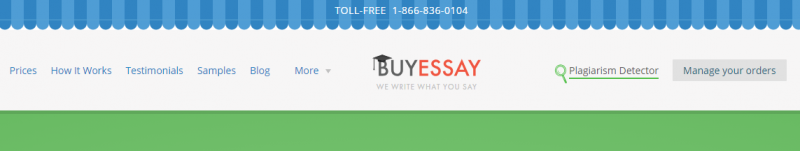 Buy write my essay