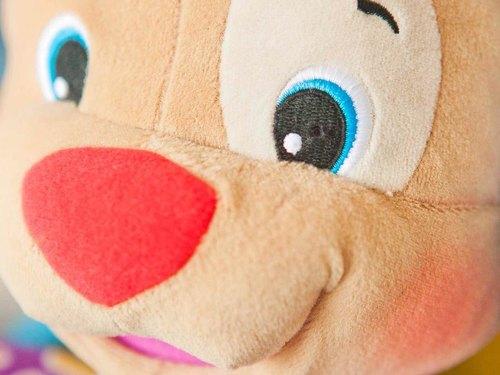 Toy Dog Nanny Cam