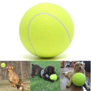 Giant Doggie Tennis Ball