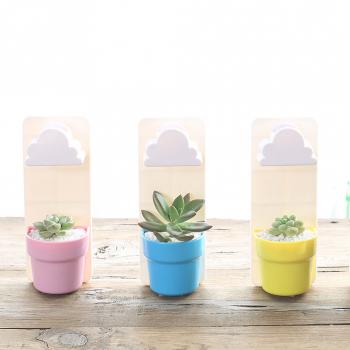 RainCloud Watering Pot