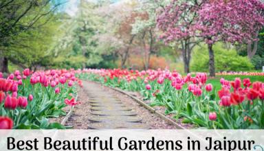 Best Beautiful Gardens in Jaipur