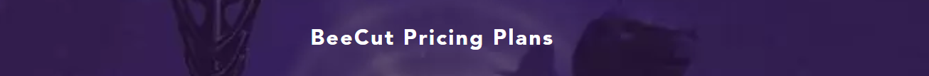 Pricing Information of BeeCut Video Editing Software