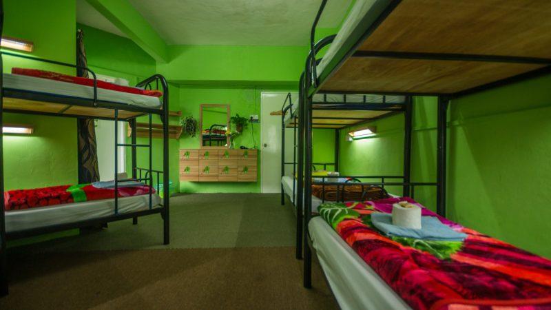 Orchid Haven Best Hostel in Cameron Highlands