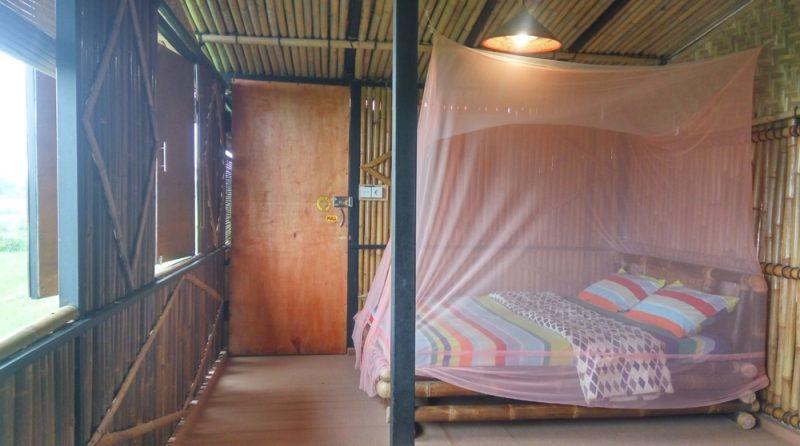 Paddy D'Sawah Best Hostel in Yogyakarta