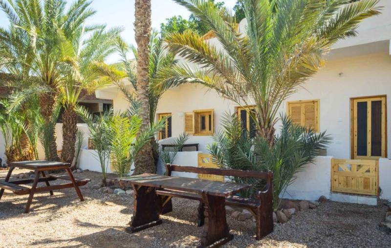 Happy Camel Oasis Best Hostels In Dahab, Egypt