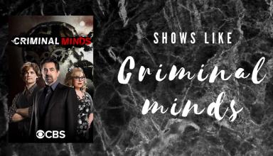 best shows like criminal minds