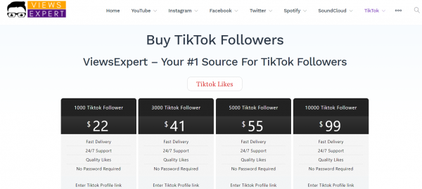ViewsExpert Tiktok Followers