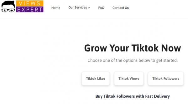 buy tiktok followers - ViewsExpert