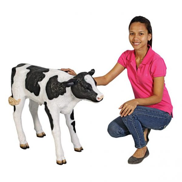 Design Toscano Buttercup, the Life-Size Holstein Calf Dairy Cow Statue