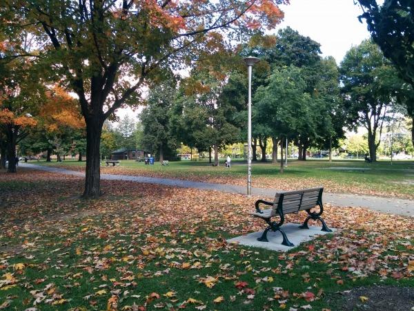 Dufferin Grove Park: Park In Toronto