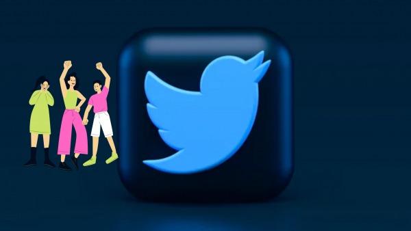 Twitter Audience Gain