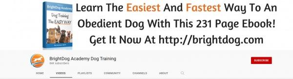 BrightDog Academy - youtube dog training