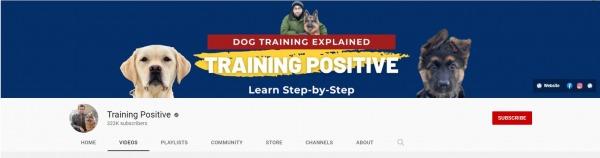 Tab Shamsi – Training Positive youtube dog training