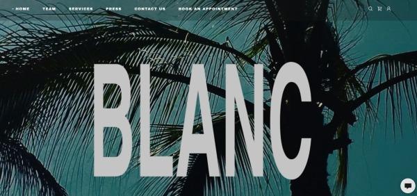 Blanc Hair Salon - hair salons in dallas