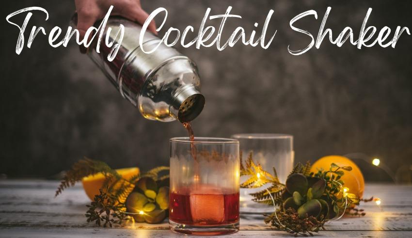 Trendy Cocktail Shaker
