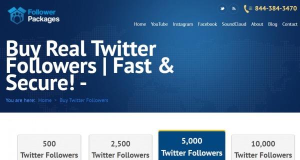 followerpackages twitter followers
