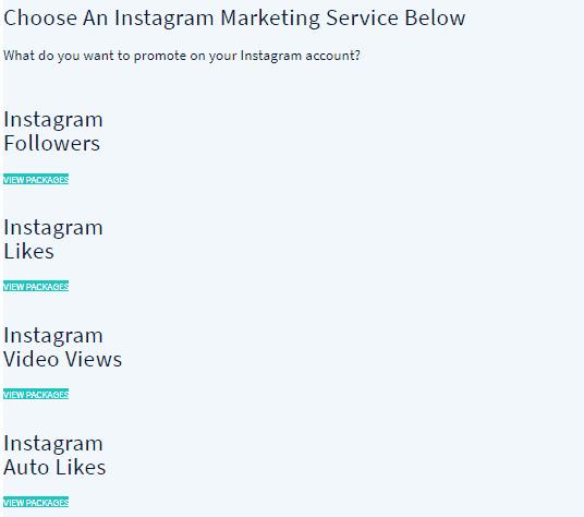 Audiencegain Instagram Service