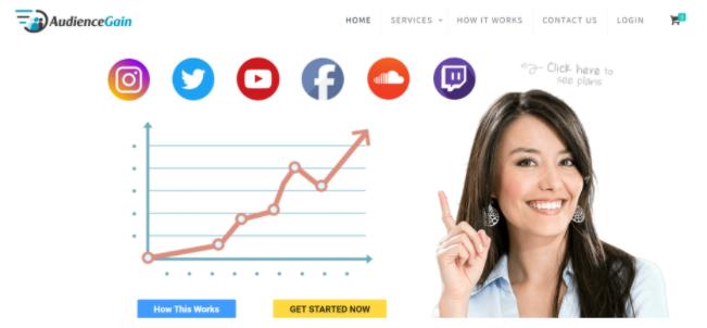 Audiencegain.com Main Site
